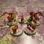 Hounds & Carnage hounds