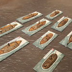 Ironclads fleet