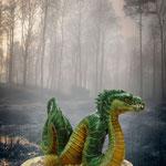 Le dragon de Colchide