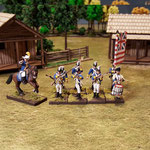 Garde de Washington