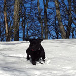 Juhui, so schön der Schnee....