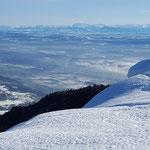 Blick vom Balmberg Richtung Alpen