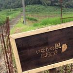 いなかの風 ほおのき 2013.5 *初心者向け農業体験 http://inakanokazehonoki.jimdo.com/