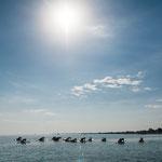 SUP Yoga bei strahlenden Sonnenschein morgens um 10 Uhr