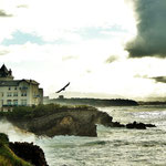Biarritz Wild Beauty