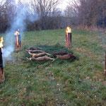 11.01.2014: Drückjagd in Utzenhain, 2 Frischlinge und 4 Rehe konnten erlegt werden