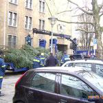 Weihnachtsbaumtransport Berlin