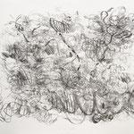 Kristin Finsterbusch, in und um Frauenstein, Lithografie, Kreide, 1996, 53x75 cm