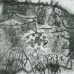 Kristin Finsterbusch, tagsüber eingestaubt, abends erleuchtet, Tiefdruck, vernis mou, 2005, 40x50 cm