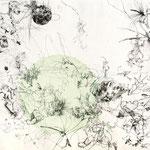 Kristin Finsterbusch, Feld, Wald und Kreis 3, Tiefdruck, vernis mou, Farbstift, Aquarell, 2014, 30 x 40 cm