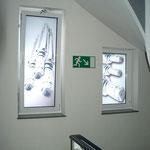 Fenstergestaltung -  - Steinhoff Kaltwalzen