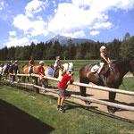 Ponyreiten ( www.schladming-dachstein.at/gröbmingerland)