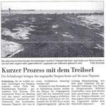 Zeitungsartikel aus Schönberg bei Kiel Herbst 2012