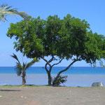 Front de mer de Saint-Paul