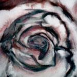 007 Rose, Acryl auf Leinwand, Ingrid Stolzenberg, 70 x 60 cm