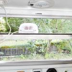 KCT-Fenster sinnvoll genutzt. Der Wasserdampf beim Eierkochen bleibt draußen!