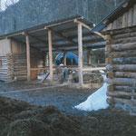 Le auvent en 2001...on y stockait le foin quand les poneys n'y dormaient pas. Devant, on voit les écuries sans la dalle béton.