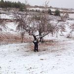 Foto remitida por Inma Teruel. Día 27
