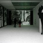 ON THE HUNT, installation, State Academy of fine Arts Stuttgart, 2008