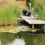 Sommer 2009- Idyll am Teich- Leben pur