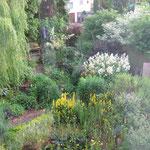Ein Blick von Oben auf den Vorgarten- duch die Scheibe fotografiert