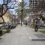 Avenue Rothschild