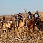 Ballade en chameaux