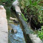 Aqueduc Wadi Qelt