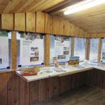 Ausstellung im ZKW-Stand