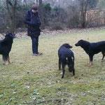 Spielen mit Hundepapa Moritz