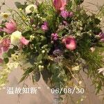 花展の花「温故知新」