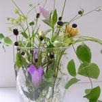 少ない水で、花瓶の中でも花を観賞