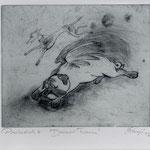 Smajic, Susanne. Konstanz. Radierung, 2012. Platte 175 x 215 mm. Probedruck II. Darwins Traum.  001