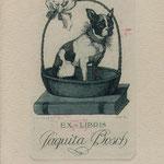 Falgas, Luis Garcia,Spsnien, Radierung, 1922. Auflage , Blatt 130 x 90 mm. Platte 85 x 55 mm. Französische Bulldogge. Bully. Extraordinäres Blatt der Zwanziger Jahre ! 001