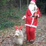 Da kommt der Weihnachtsmann mit seinem Rehntier
