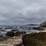 Carmel by the Sea, CA, September