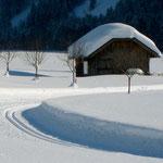 bestens präparierte Langlaufloipen, Wintersport Bregenzerwald, Schoppernau, Haus Stelzhammer