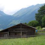Holdamoos, Sommerurlaub, Bregenzerwald, Schoppernau