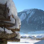 Blick auf die Hochalpe, Haus Stelzhammer, Schoppernau, Ferienwohnungen