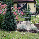 Sitzplatz Garten historische Villa Wien