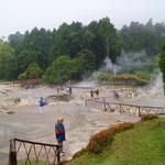 Overzicht caldeira's van Furnas waar de Cozido wordt gemaakt. Door de warmte van de bodem (water borrelt op de grond) wordt de bereiding langzaam gegaard.