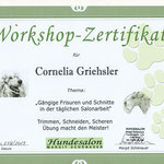 Workshop - Pudelschnitt im Salon