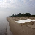 Weiße Mehl-Pigmente am Strand von Krautsand (Foto: Anna Badur)
