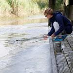 Anna streut bei ablaufend Wasser Mehl auf den Schlick