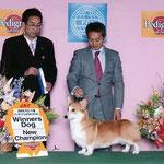 2009 FCI 千葉 インターナショナルドッグショー WINNERS DOG