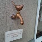 外の入り口付近に水道があります。手を洗ったり、わんちゃんの水飲みとしてお使いください。