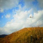 大きな音に振り返れば飛行機がとびたっていきました 出雲便?大阪便? いってらっしゃ~い♪