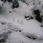 窓の外に小さな雪だるま  製作者は言わずもがな  笑