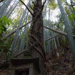 お地蔵様の背後の木に這うのは・・・へび?それとも竜?