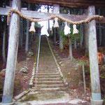 ワケノス神社・・・ どんな字を書いたんだっけ。 昼でもうっそうとした木々に日差しが遮られて・・・